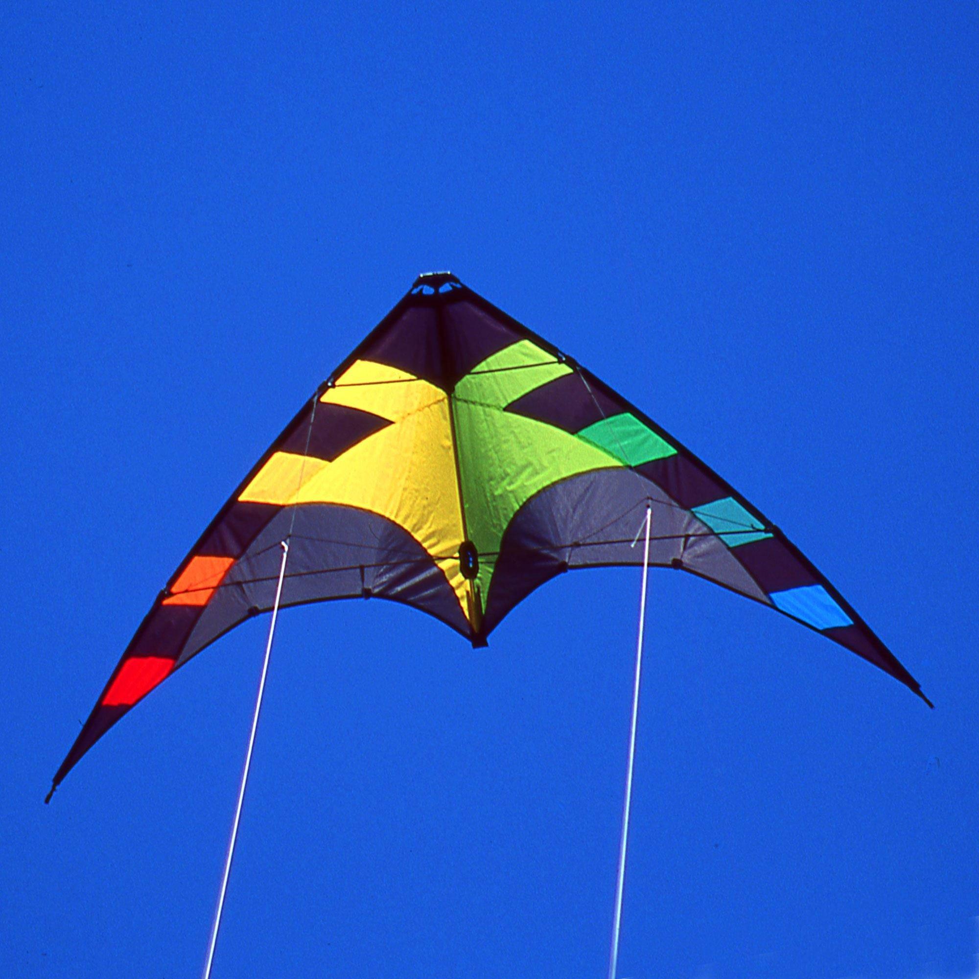 Spider Dual Line Stunt Kite