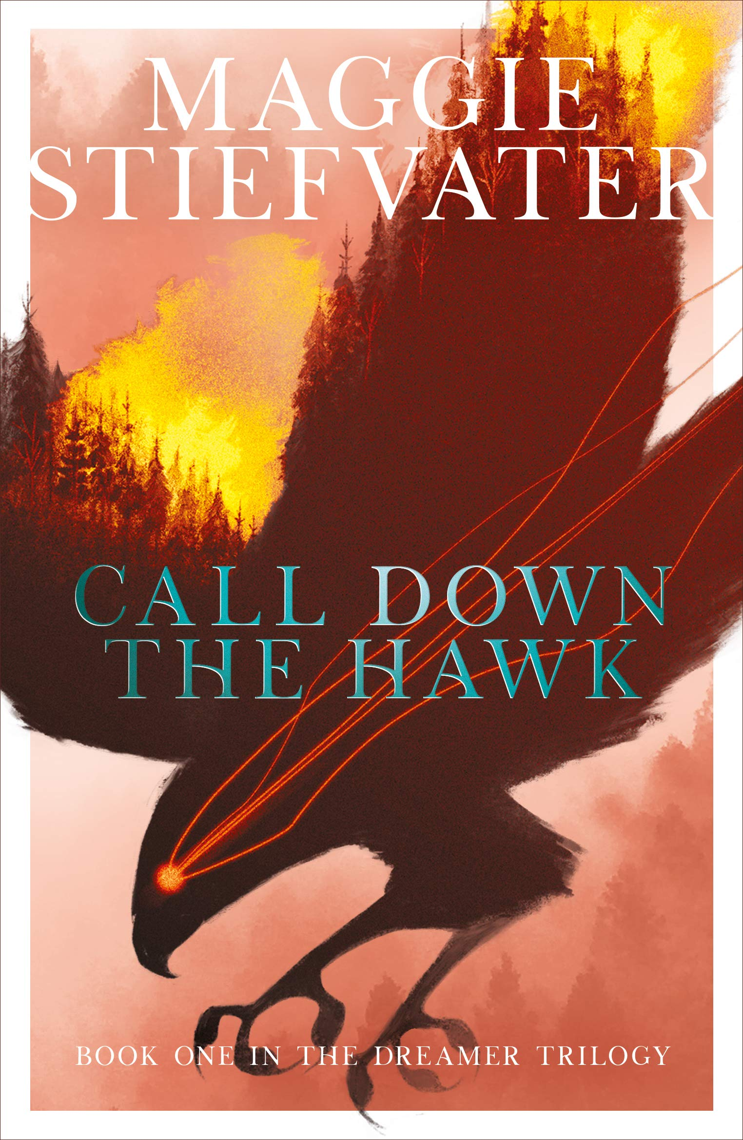 Image result for call down the hawk uk cover