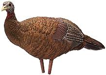AvianX Breeder Hen