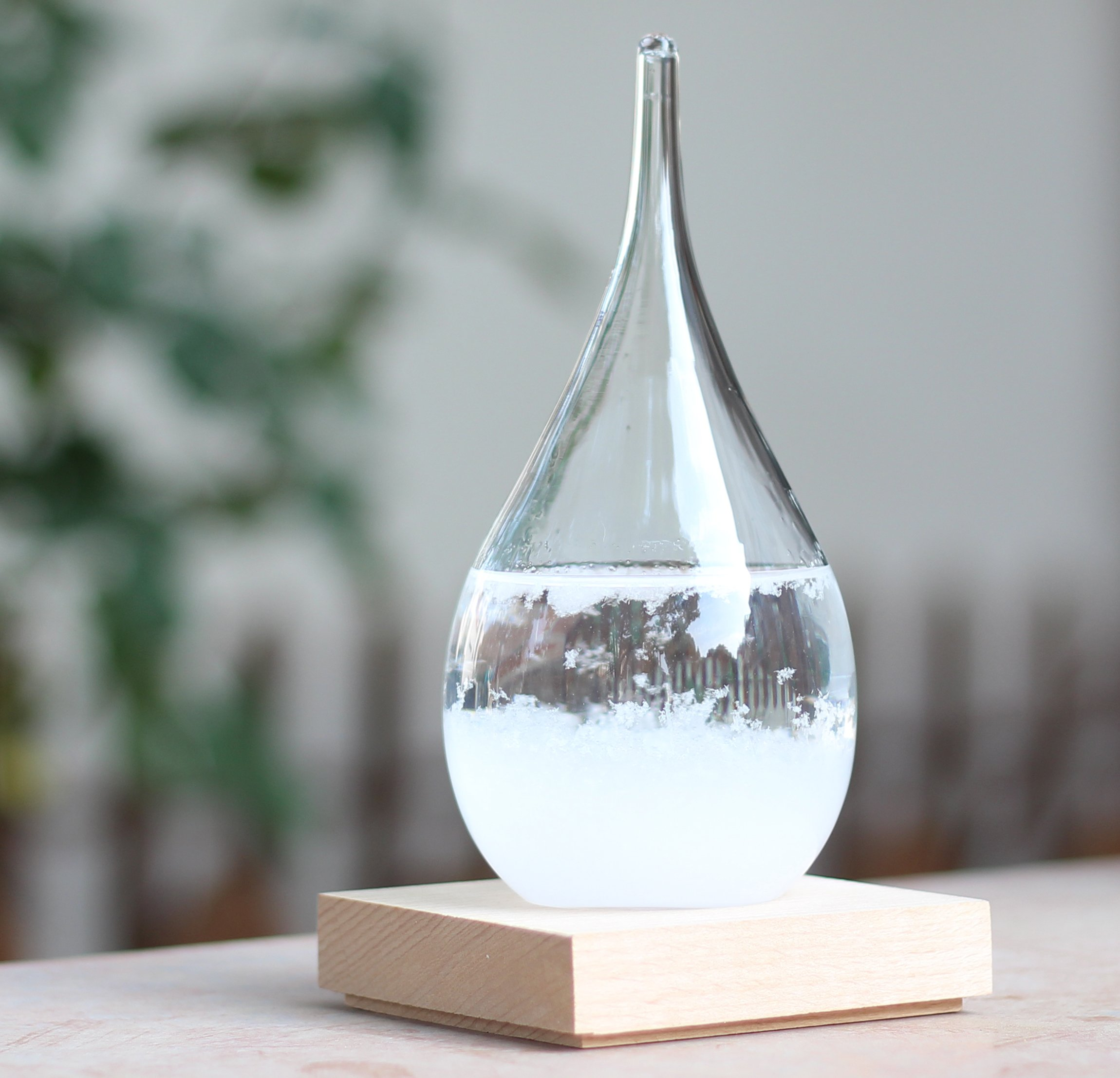 meisou Weather Predictor Storm Glass Globe Drop Decoration Large Weather Forecast Ornament Barometer Storm Bottle Thermometer