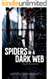 Spiders in a Dark Web