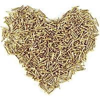 Omyzan 500PCS Cabeza redonda de oro pequeños clavos