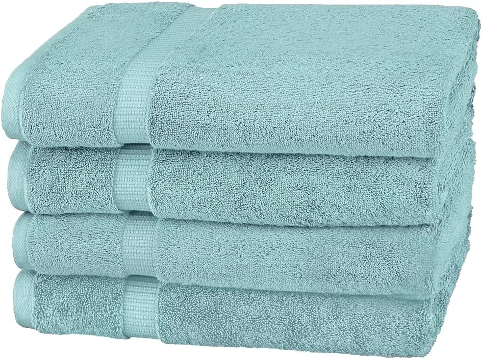 Pinzon Organic Cotton Bath Towel, Set of 4, Spa Blue