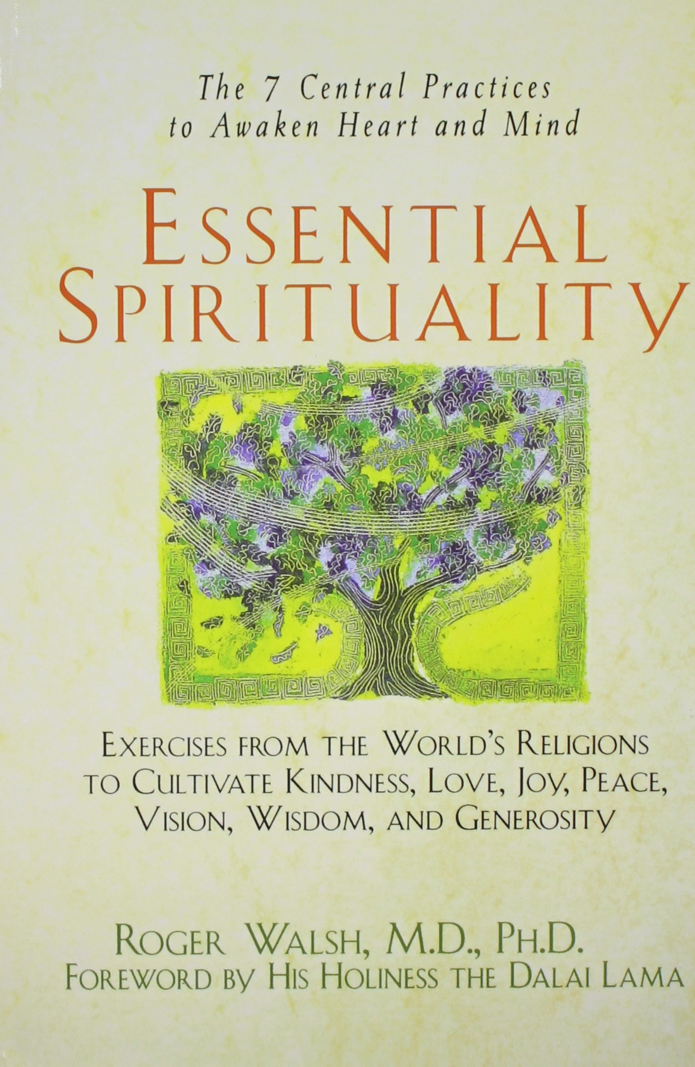 Read Online Essential Spirituality: The 7 Central Practices to Awaken Heart and Mind PDF