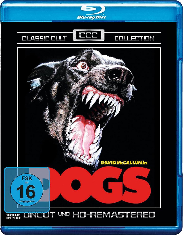 DVD/BD Veröffentlichungen 2016 - Seite 17 81YumWlWSeL._SL1500_