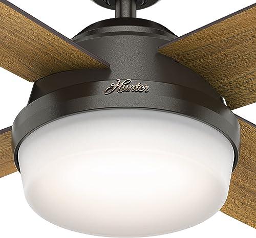 Hunter Fan 52 inch Contemporary Ceiling Fan