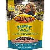 Zuke's Puppy Naturals Puppy Treats Salmon and Chickpea Recipe - 5 oz. Bag