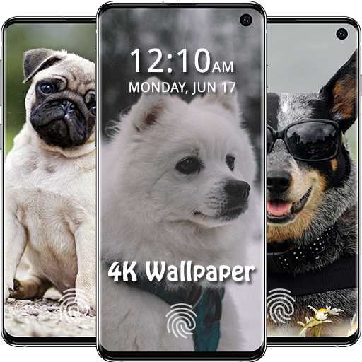 Dog Wallpapers Cute Puppy Dog Live Wallpaper Amazones