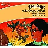 harry potter i harry potter l 39 cole des sorciers livre audio french edition j k. Black Bedroom Furniture Sets. Home Design Ideas