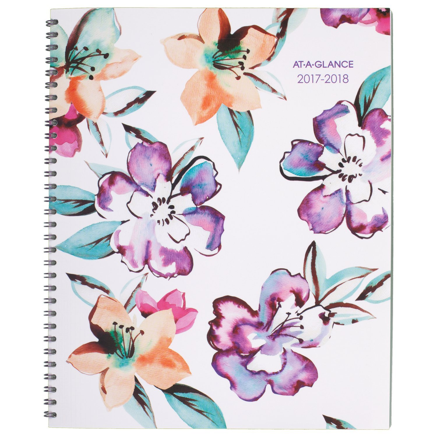 AT-A-GLANCE Academic Weekly / Monthly Planner, July 2017 - June 2018, 8-1/2'' x 11'', June Design (1012-905A)