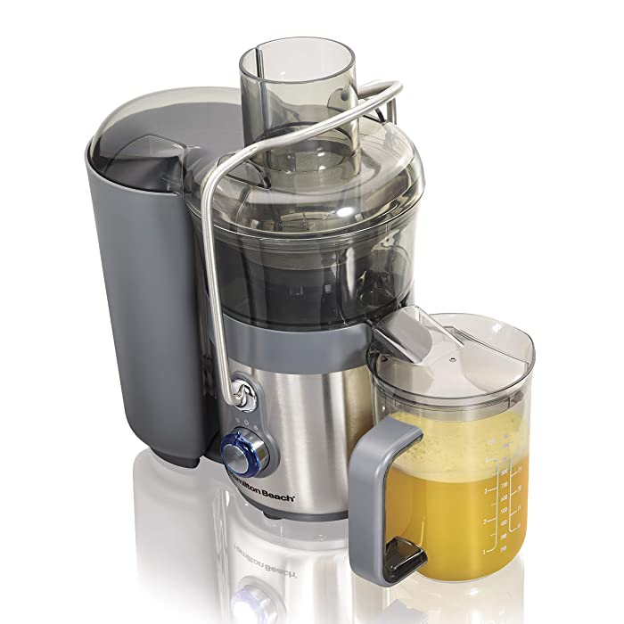 The Best Two Speed Juicer