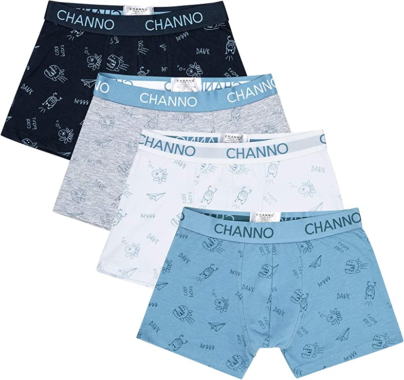 Channo Calzoncillos Boxer de Niño con Dibujos de Monstruitos (Pack de 4) (Monstruitos, 2-3 años): Amazon.es: Ropa y accesorios