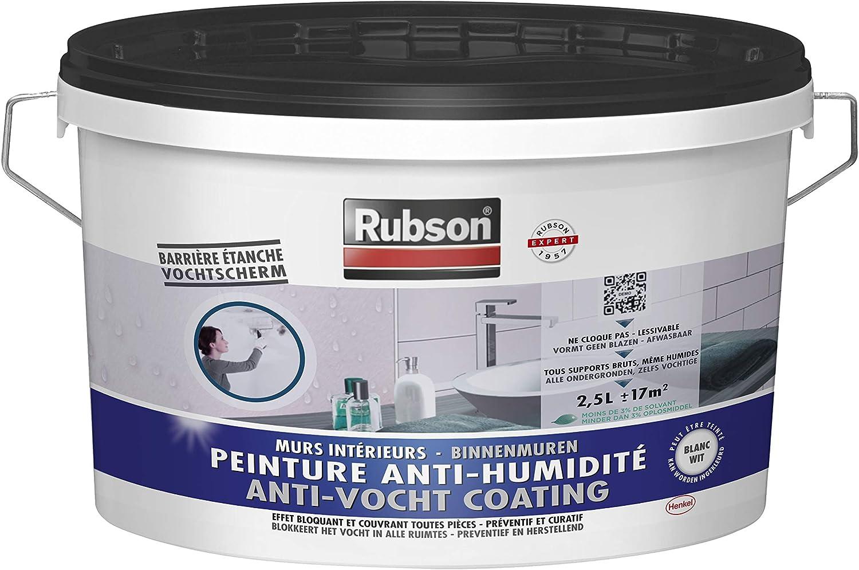 Rubson Peinture Anti Humidite Peinture Acrylique Anti Moisissures