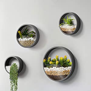 Plant Stacks Round Metal Wall Hanging Planter for Indoor Plants   12