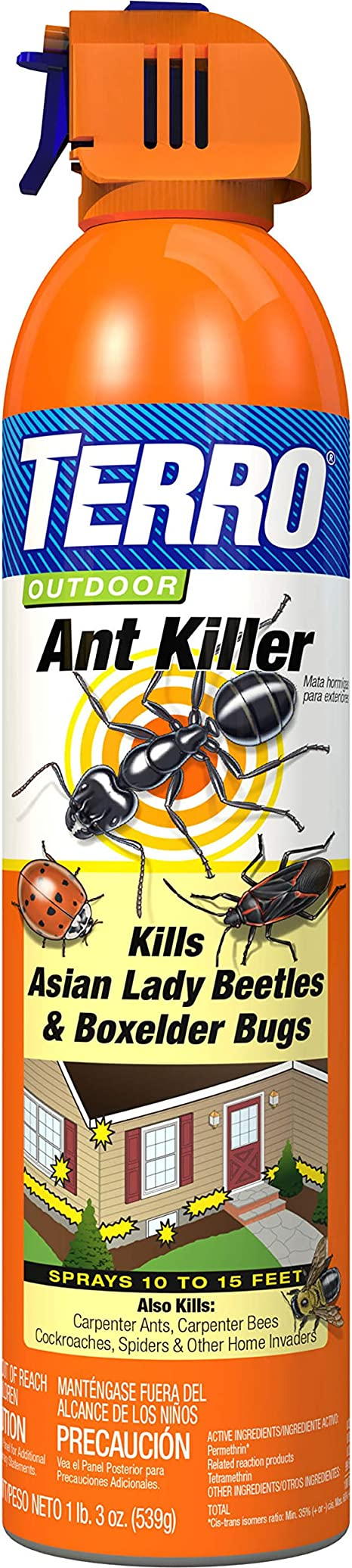 Amazon Com Terro 1700 T1700 19 Oz Outdoor Ant Killer Spray 1 Pack Terro Ant Garden Outdoor