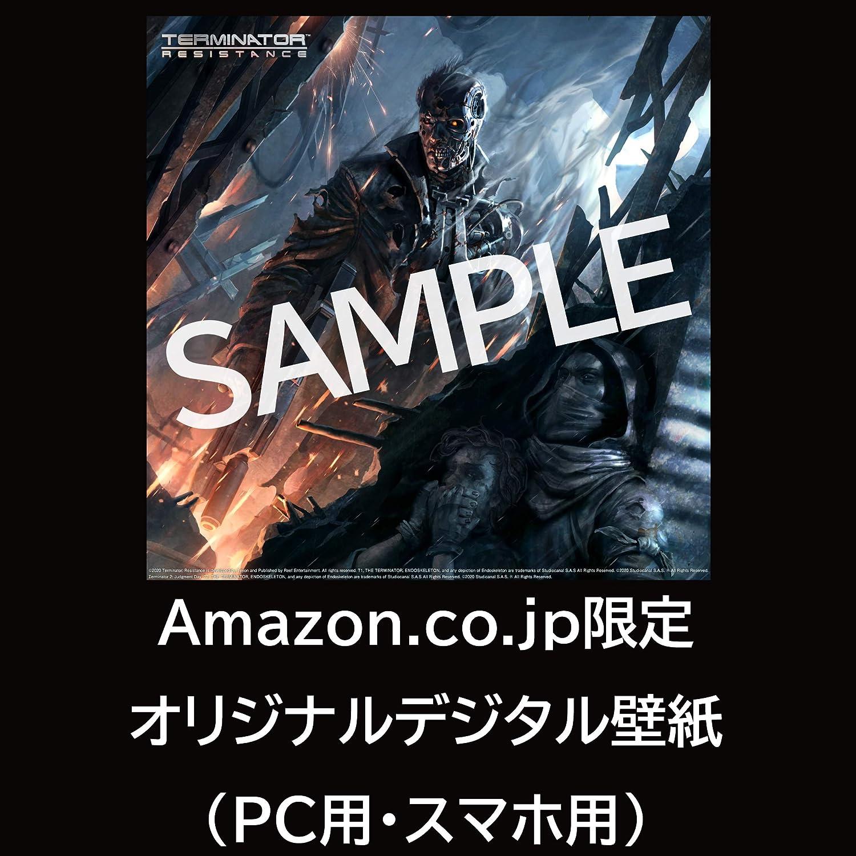 Amazon Terminator Resistance ターミネーターレジスタンス Amazon Co Jp限定 オリジナルデジタル壁紙 配信 Ps4 ゲーム