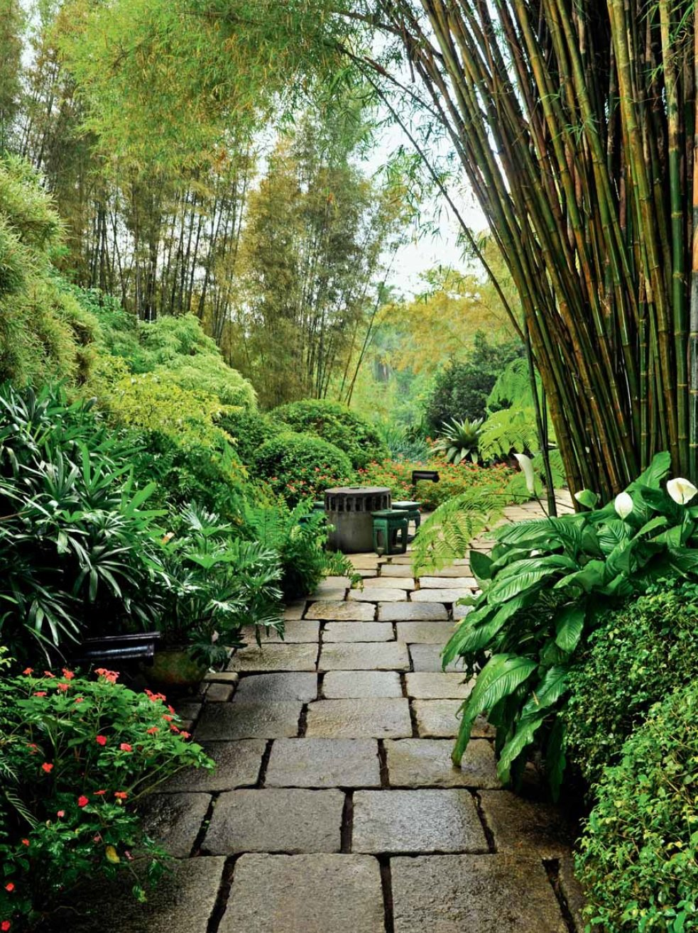 Amazon.com: Tropical Gardens: 42 Dream Gardens by Leading Landscape ...