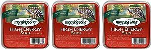 Morning Song 3 Pack of High Energy Suet Cakes, 11 Ounces Each, Wild Bird Food