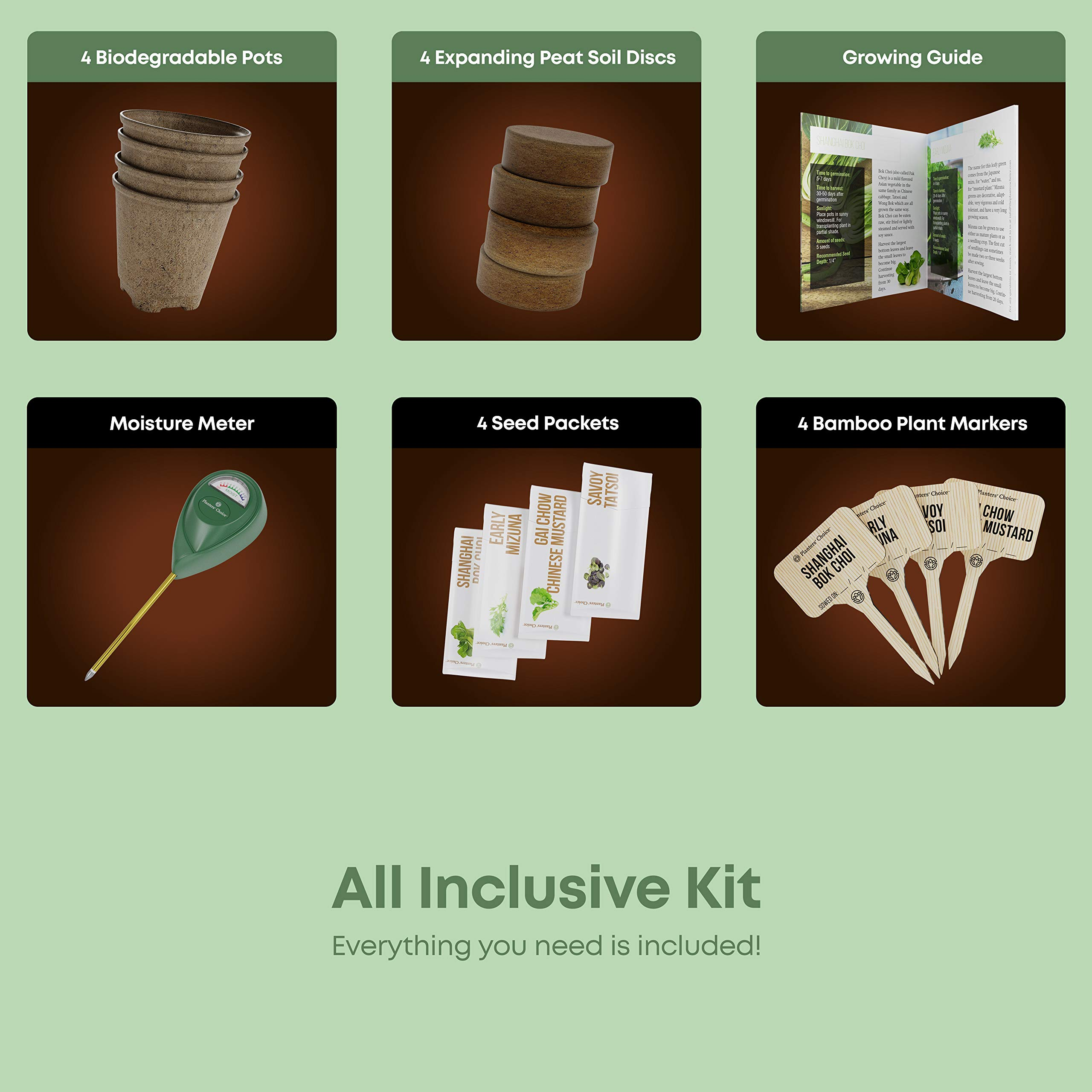 Asian Greens Growing Kit - Everything Included to Easily Grow 4 Traditional Asian Greens from Seed + Moisture Meter: Bok Choi, Mizuna, GAI Chow, Savoy Tatsoi by Planters' Choice (Image #3)