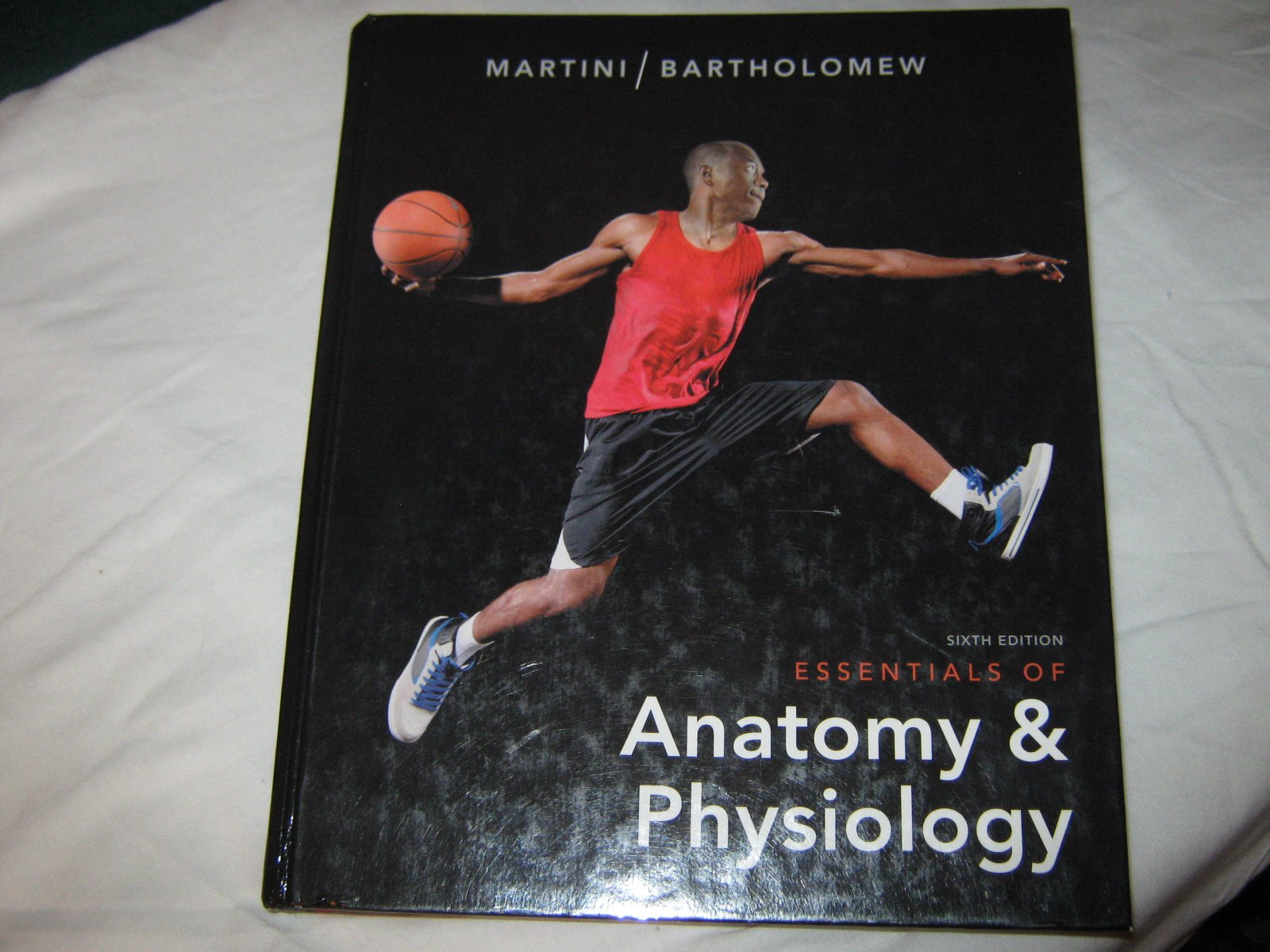 Essentials of Anatomy and Physiology (Sixth Edition): Martini and ...