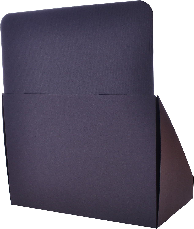 color negro 12 Wide de la marca Stand-Store paquete de 50 unidades Soporte de muestra de cart/ón