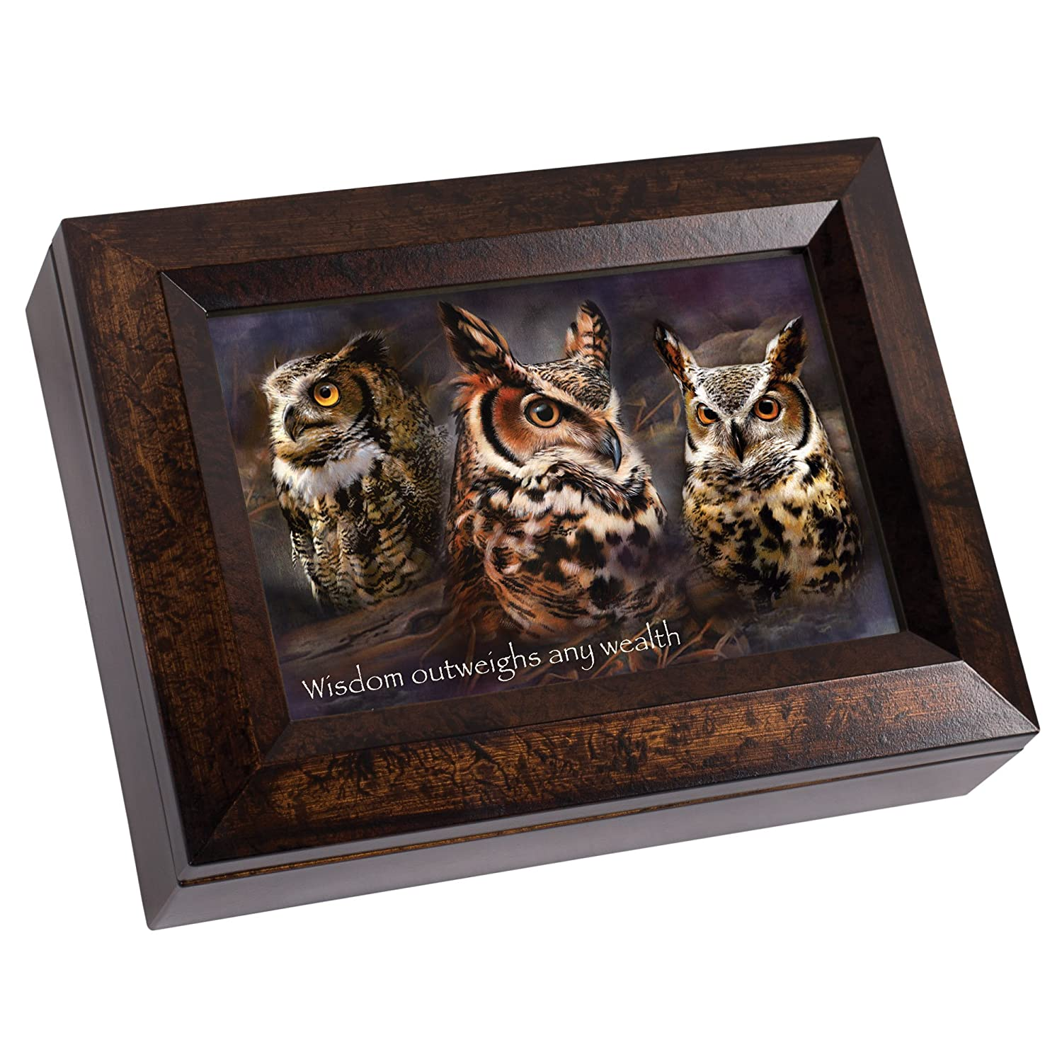 【あすつく】 Owl Sound Wisdom Outweighs Any Wealth Amber Cottage Garden Any Burlwood Amber Finish Digital Nature Sound Recording Keepsake Box B00KY7AA8G, 品良:44d64c93 --- arcego.dominiotemporario.com