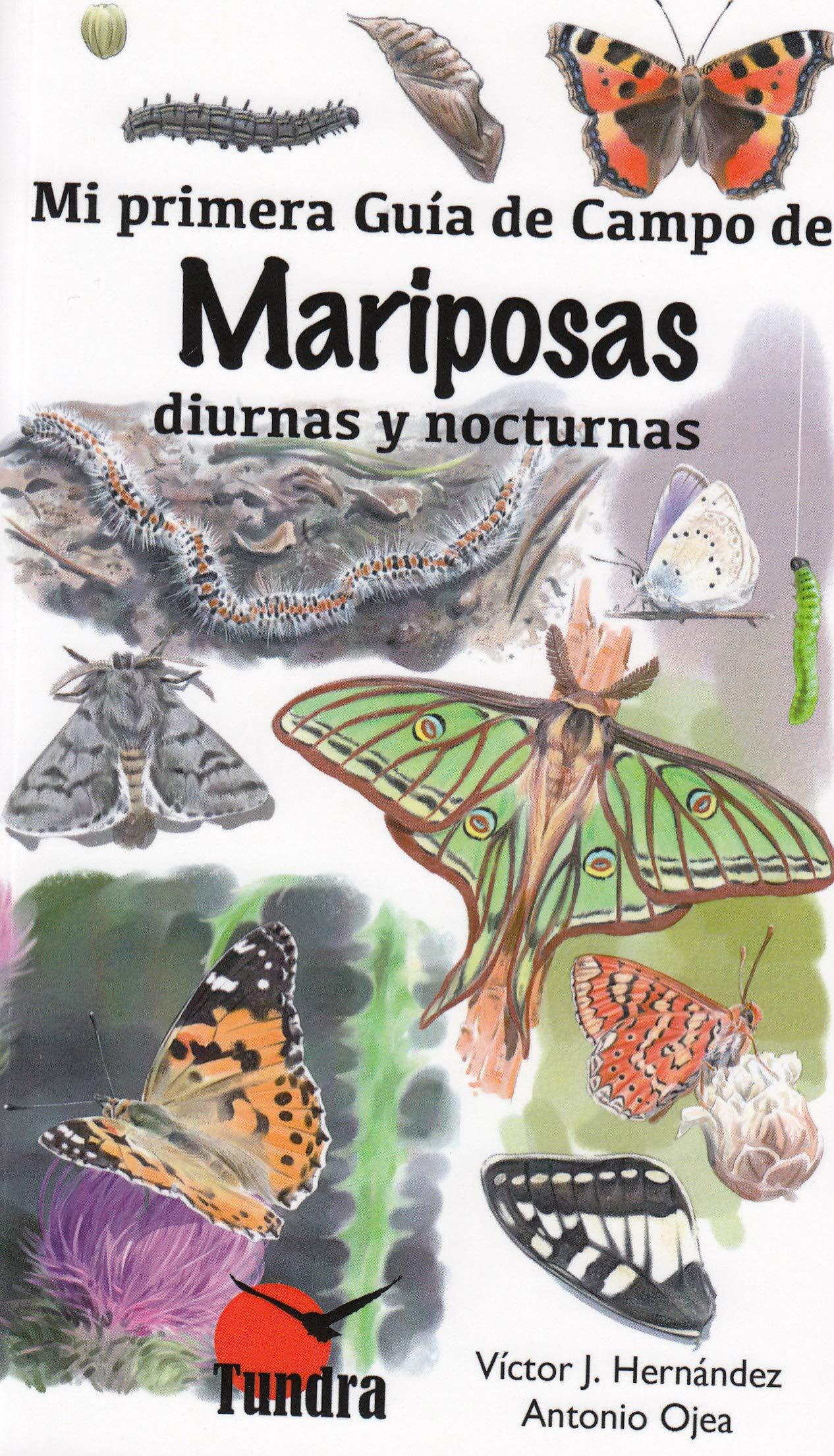 Mi primera guía de campo de mariposas diurnas y nocturnas: Amazon.es: Hernandez Victo, Hernandez Victo: Libros