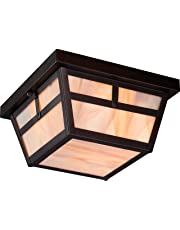 Nuvo Lighting 60/5676 Tanner Flush 2-Light 60-Watt A19 Outdoor Close to Ceiling Porch and Patio Lighting with Honey Stained Glass, Claret Bronze