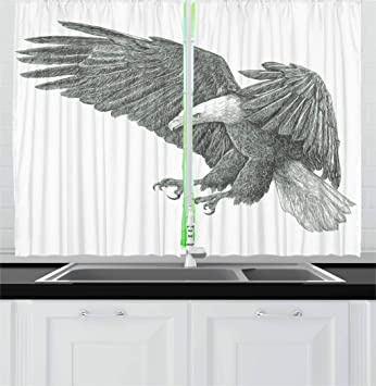 Amazon.com: Eagle cortinas por ambesonne, Blanco y Negro ...