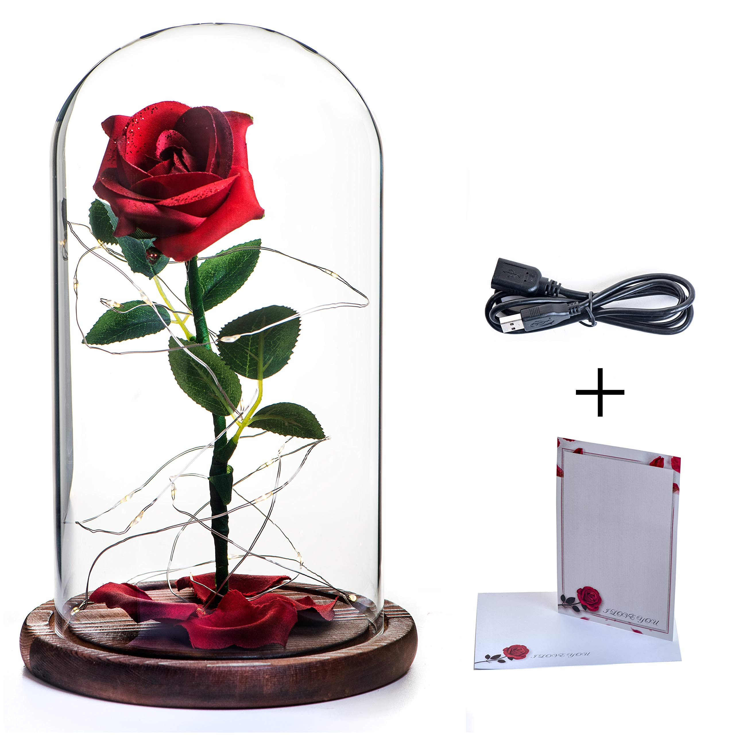 Dr. Premium Beauty and The Beast Rose Kit: Red Silk Rose and LED Lights in Glass Dome on Wood Base for Home Décor, Holiday, Party, Wedding, Anniversary