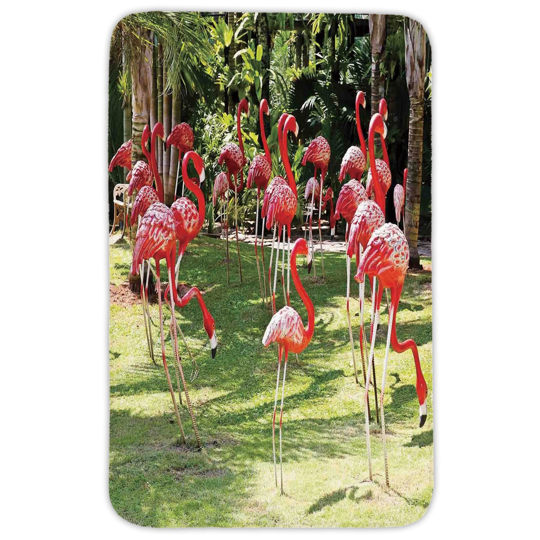 Rectangular Area Rug Mat Rug,Flamingo,Flamingo Bird Model in the Garden in Vibrant Colors Under Sunlight Shadows,Pink and Green,Home Decor Mat with Non Slip Backing