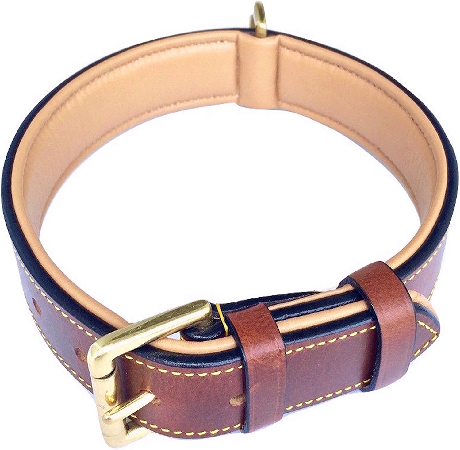 Soft Touch Collars, Luxury Padded Dog Collar Review