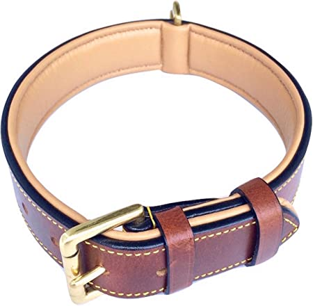 Soft Touch Collars - Luxury Real Leather Padded Dog Collar