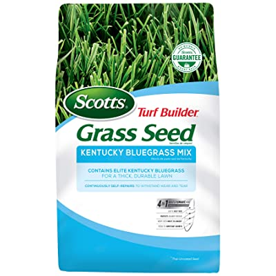Scotts Turf Builder Grass Seed Kentucky Bluegrass Mix - 3 lb., Use in Full Sun, Light Shade, Fine Bladed Texture, and Medium Drought Resistance, Seeds up to 2, 000 sq. ft. : Grass Plants : Garden & Outdoor