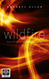 Wildfire: A full length erotic romance novel (Smoke Chaser Series Book 1)