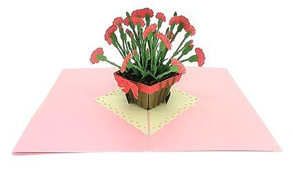 Amazon paper love carnation plant 3d pop up greeting card for paper love carnation plant 3d pop up greeting card for graduation birthday thank you m4hsunfo