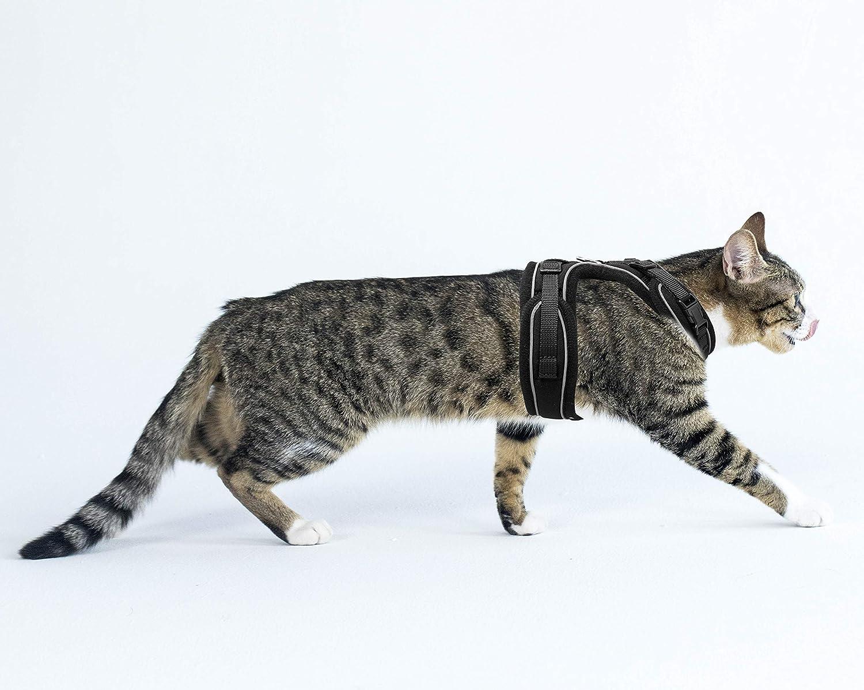Adjustable Reflective Comfortable Soft Cat Chest Harness Kitten Mesh Vest Harness Mudinpet Cat Harness Escape Proof