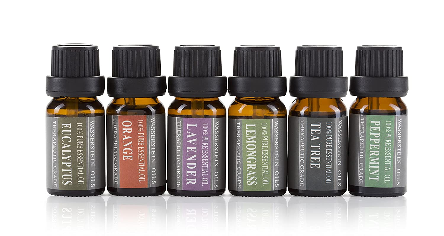 amazon com aromatherapy oils 100 pure basic essential oil gift set