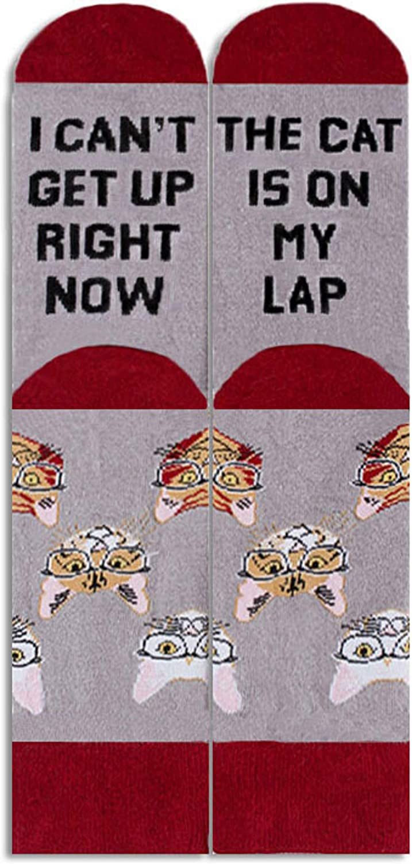 Cavertin Womens Novelty Socks with Gift Box