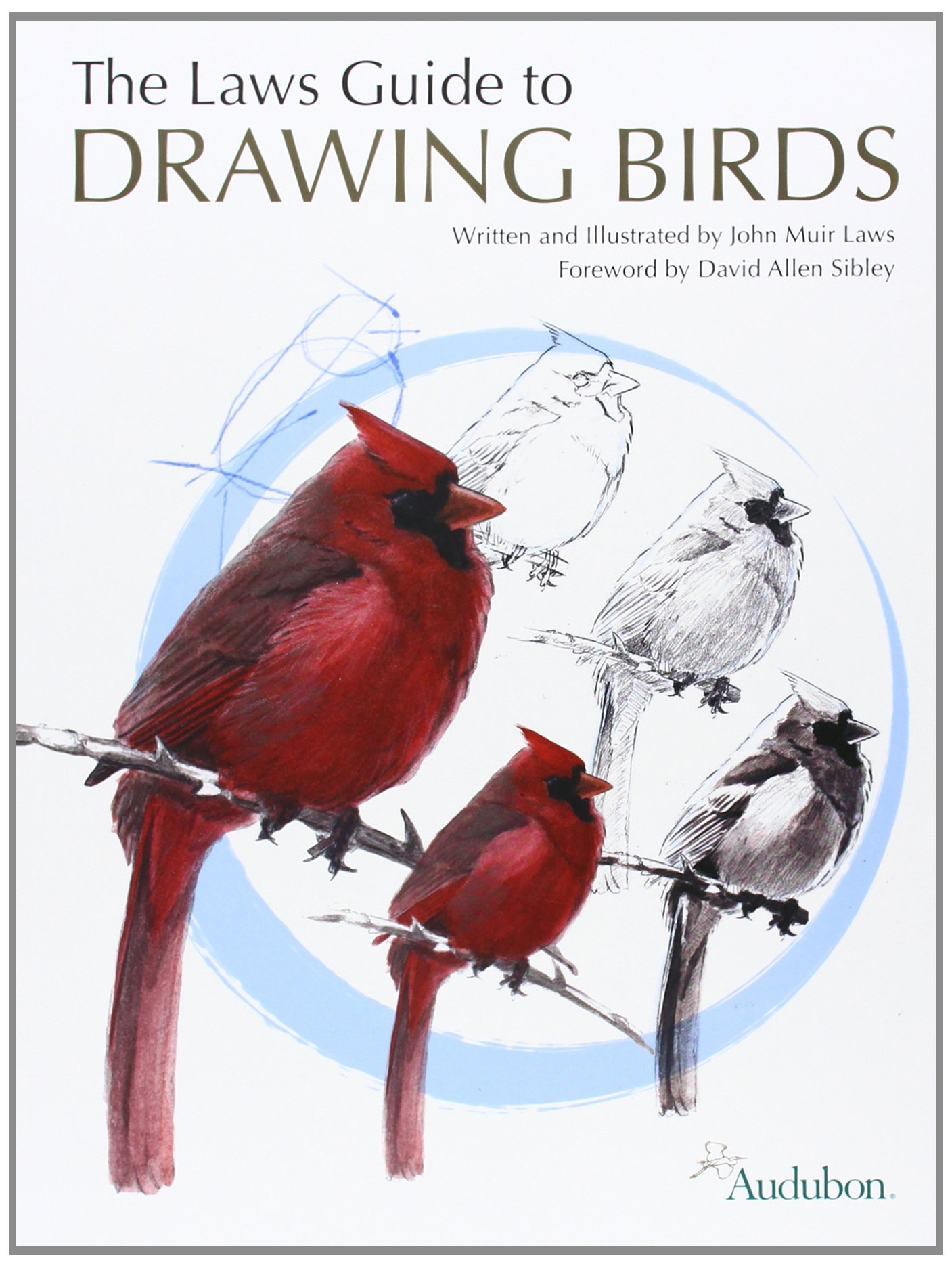The laws guide to drawing birds amazon john muir laws books fandeluxe Gallery