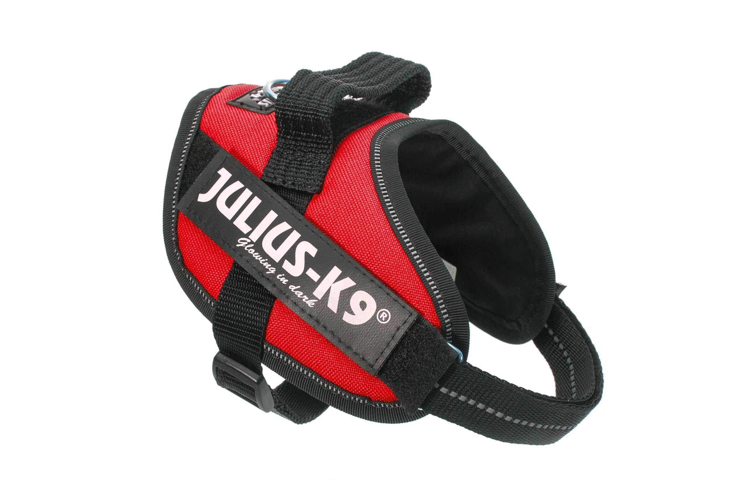 Julius-K9 IDC-Power Harness, Red, Size: Mini-Mini/40-53 cm