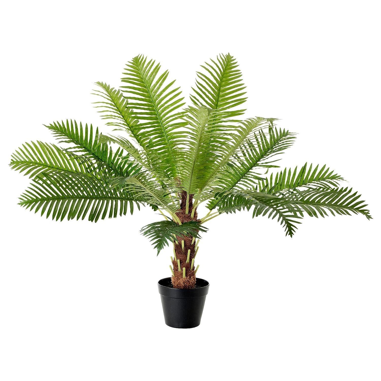 IKEA(イケア) FEJKA 人工観葉植物 ソテツ B00JEY9HOI
