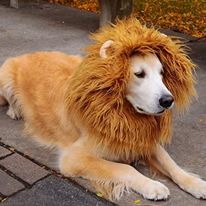 enjoy pet lion mane for dog dog costume lion wig with ears and tail for