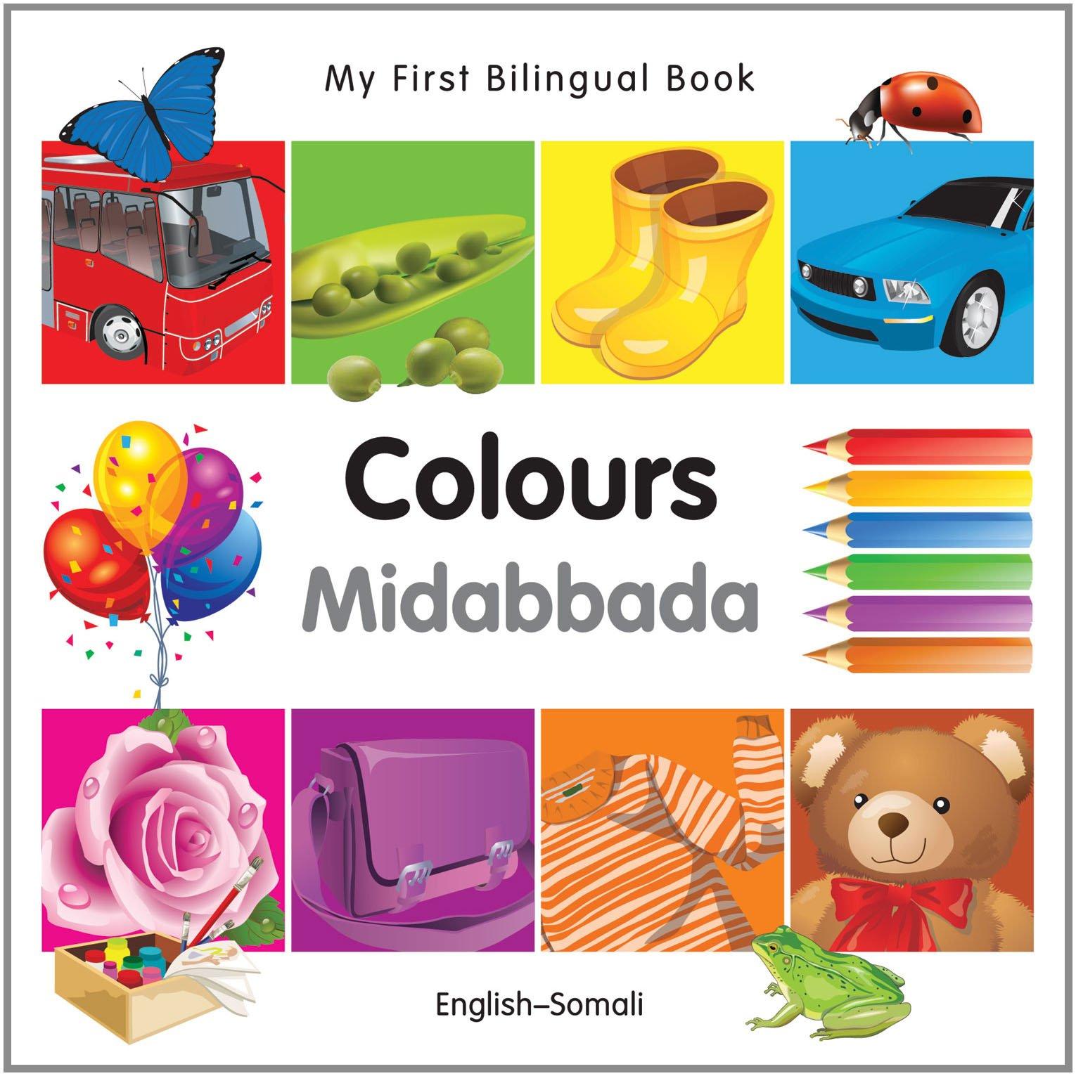 Download My First Bilingual Book–Colours (English–Somali) PDF