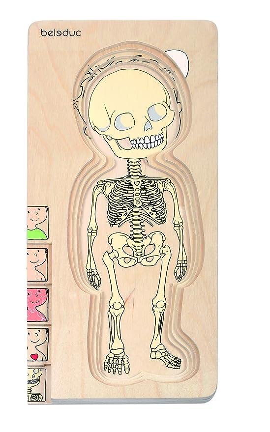 Holzpuzzle Anatomie Mädchen, 29-tlg. Puzzle, spielerisches erpuzzeln ...