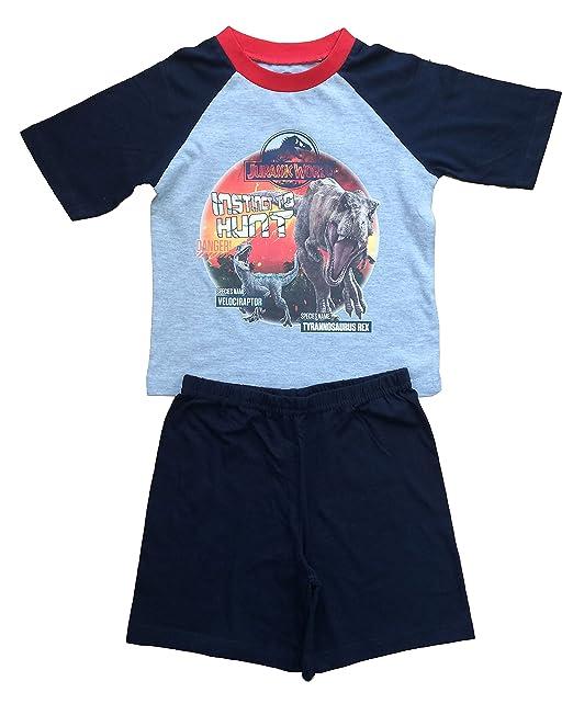 Jurassic World Pijama dos piezas - para niño Gris gris 4-5 Años