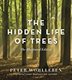 The Hidden Life of Trees: The Illustrated Edition