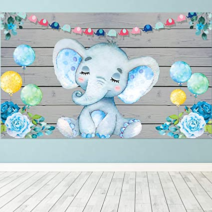 Amazon Com Blue Elephant Boy Baby Shower Decorations Supplies Large Fabric Cute Baby Elephant Backdrop For Baby Shower Party Elephant Birthday Theme Watercolor Flower Cartoon Photo Booth Background Banner Toys Games,Tiny Houses Wisconsin Dells
