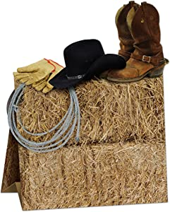 3-D Western Centerpiece Party Accessory (1 count) (1/Pkg)