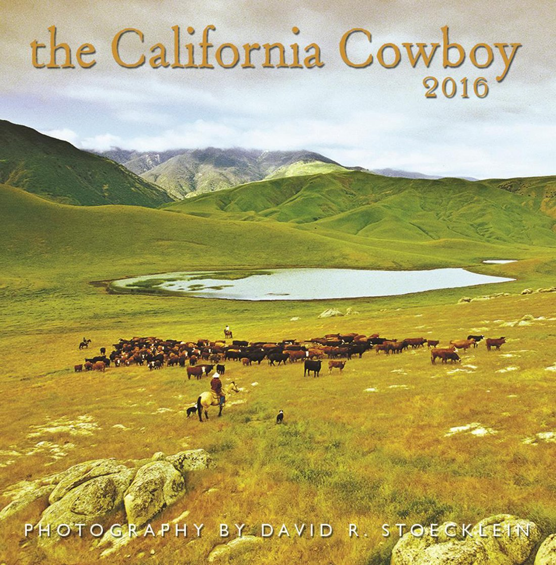 Read Online 2016 California Cowboy Wall Calendar ebook